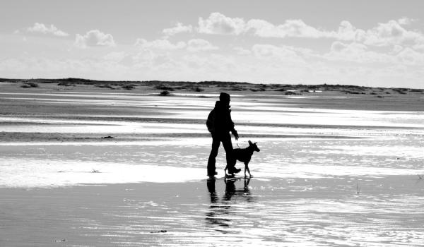 Spaziergang mit Hund an lockerer Leine